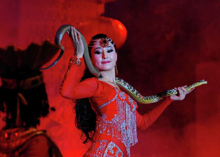 This picture taken on February 6, 2013 shows an actress performing with a snake to celebrate the coming lunar new year of China in Hetian, northwest China's Xinjiang Uygur Autonomous Region.   The lunar new year, or spring festival, falls on February 10.              CHINA OUT   AFP PHOTOSTR/AFP/Getty Images Photo: STR, AFP/Getty Images / AFP