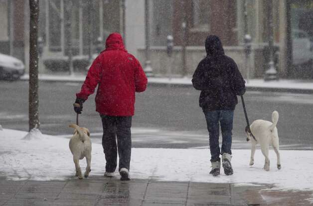 A couple of dog walkers head down Bedford Street in a snow storm on Friday, Feb. 8, 2013. Photo: Chris Preovolos / 2011