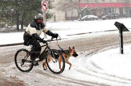A novel way to walk the dog in the snow is seen in Danbury Friday, Feb. 8, 2013. Photo: Michael Duffy / The News-Times