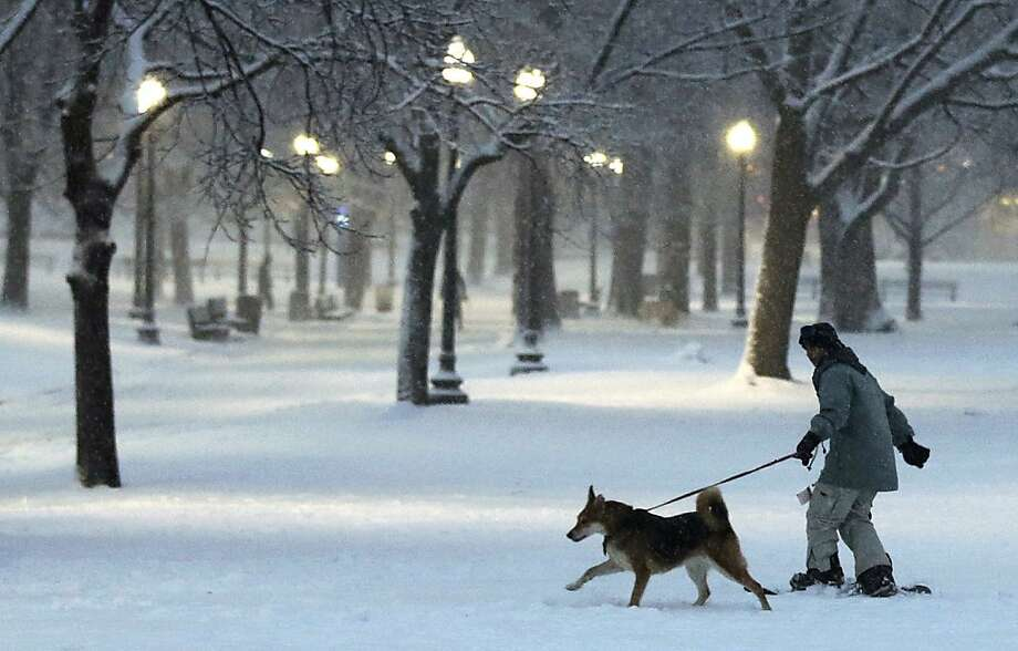 A dog pulls a snowboarder through the Boston Common, which is getting hit hard by the blizzard. Photo: Charles Krupa, Associated Press