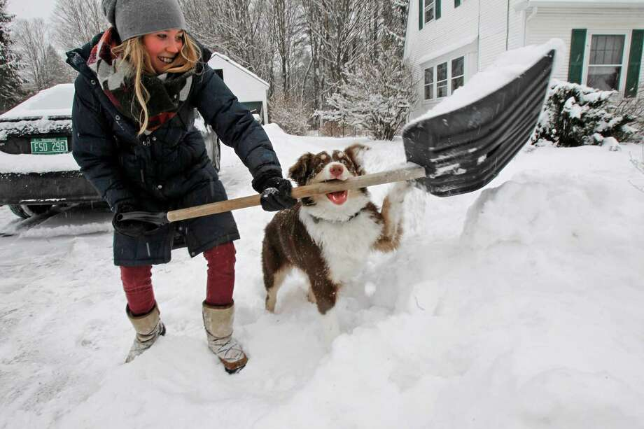 Lilah Watt gets some interference from her 6-month-old puppy, Willa, as she shovels out from the snowstorm on Friday, Feb. 8, 2013 in Montpelier, Vt. Photo: Toby Talbot, Associated Press / AP