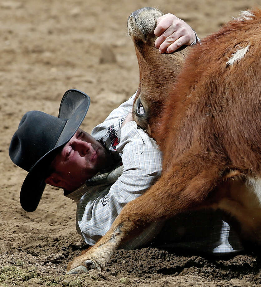 Olin Hannum, of Ogden, Utah, competes in the steer wrestling event during the San Antonio Stock Show & Rodeo Friday Feb. 8, 2013 at the AT&T Center.   Hannum's time was 6.5 seconds. Photo: Edward A. Ornelas, San Antonio Express-News / © 2013 San Antonio Express-News