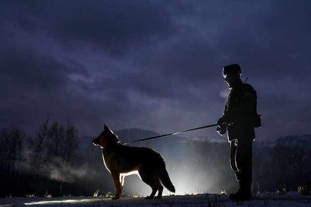 A Ukrainian border guard and dog patrol the Ukraine-Romanian border in the Zakarpattia region, some 200kms from the western city of Uzhgorod on February, 7, 2013. Ukrainian border guards detained 1900 people who were trying to cross the country borders  illegally in 2012, and confiscated 653 pieces of weapons and  about 107 kilograms of drugs.  Photo: Olexander Zobin, AFP/Getty Images
