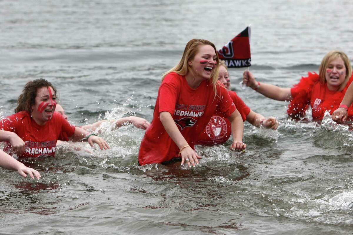 Plungers from Seattle University dip into the chilly water of Lake Union during the Special Olympics Washington Polar Plunge on Saturday, February 9, 2013 at South Lake Union Park in Seattle. Nearly 600 plungers participated in the event, part of a fundraiser for Special Olympics Washington.