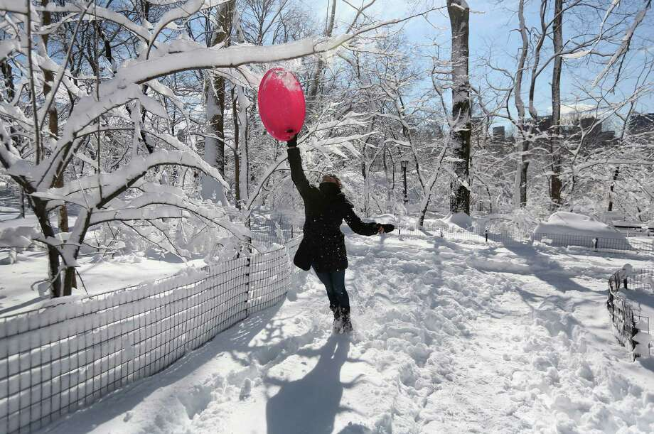 Brooke Linsky knocks a snow-coverd branch in Central Park on February 9, 2013 in New York City. The park received almost a foot of snow, as New York was spared the worst of the massive snow storm that hit the U.S. Northeast. Photo: John Moore, Getty Images / 2013 Getty Images