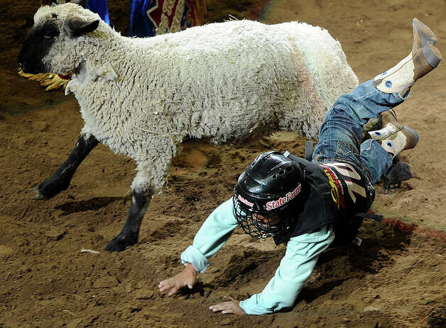 Young mutton busting competitor Jose Rodriguez tumbles during the third day of Stock Show & Rodeo on Saturday, Feb. 9, 2013. Photo: Billy Calzada, San Antonio Express-News / San Antonio Express-News