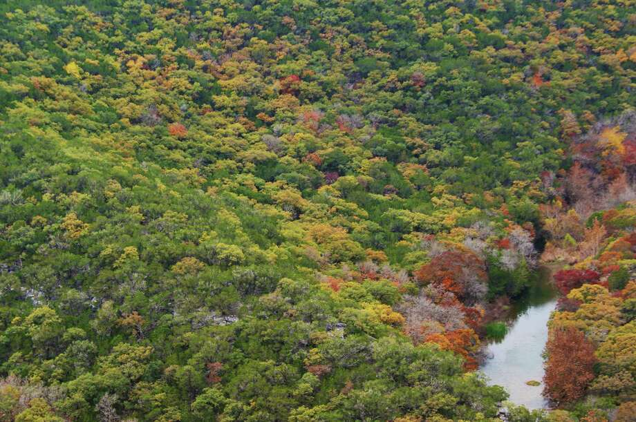 Lost Maples State Natural Area is most famous for its fall foliage.  / Copyright 2013 Josh Trudell, all rights reserved