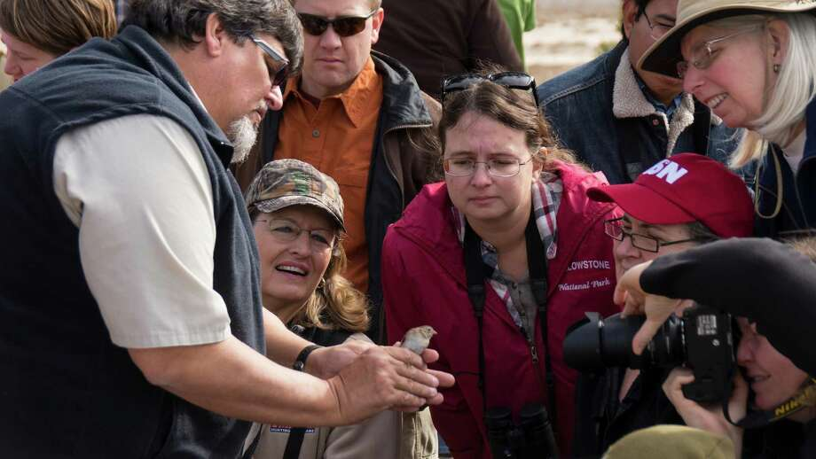 Park Interpreter Craig Hensley shows a field sparrow to onlookers during the 'Bird in the Hand' program at Guadalupe State Park.  Photo: Josh Trudell / © Copyright 2013 Josh Trudell Photography. All Rights Reserved.