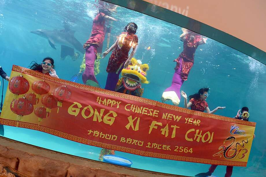 Performers dressed as mermaids wearing Chinese cheongsam perform in an underwater show at Jakarta's Ancol theme park on February 10, 2013 in celebration of the Chinese Lunar New Year. Photo: Romeo Gacad, AFP/Getty Images