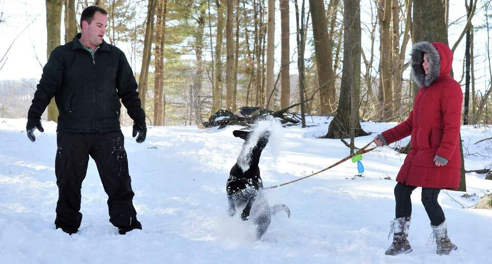 Nathan Archer and Rebecca Goetz throw snowballs for Biern to catch at Tarrywile Park  in Danbury, Su