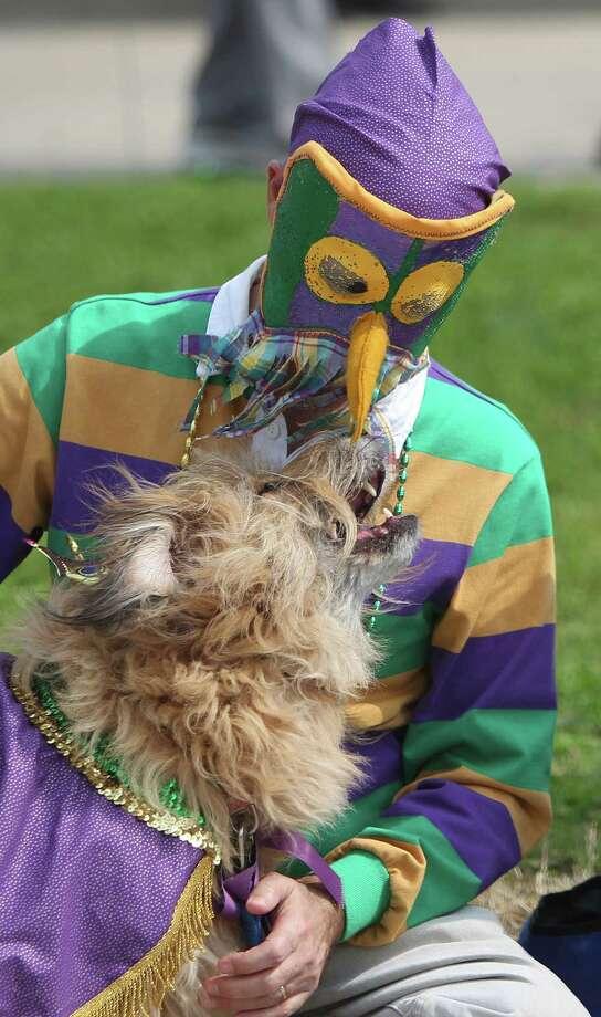 Roger Wood pets congeniality award winner Teddy. Photo: Mayra Beltran, Houston Chronicle / © 2013 Houston Chronicle
