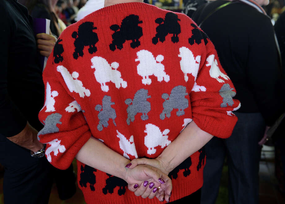 A woman wears a Poodle sweater as she watches judging at the Westminster Kennel Club Dog Show February 11, 2013 in New York. Photo: STAN HONDA, AFP/Getty Images / 2013 AFP
