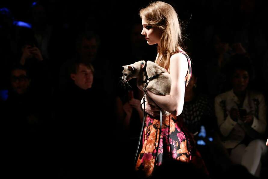 Why do they call it the catwalk if the cats get carried? A model gives a kitty a ride as she