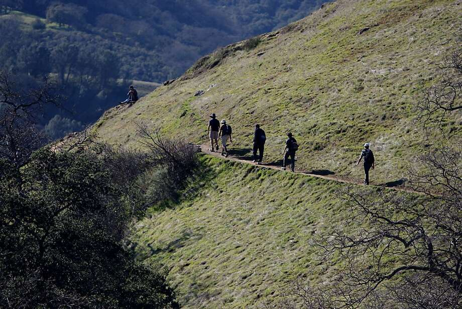 The Canyon View Trail in the Sunol Regional Wilderness offers views of an oak-lined canyon. Photo: Jessica Olthof, The Chronicle