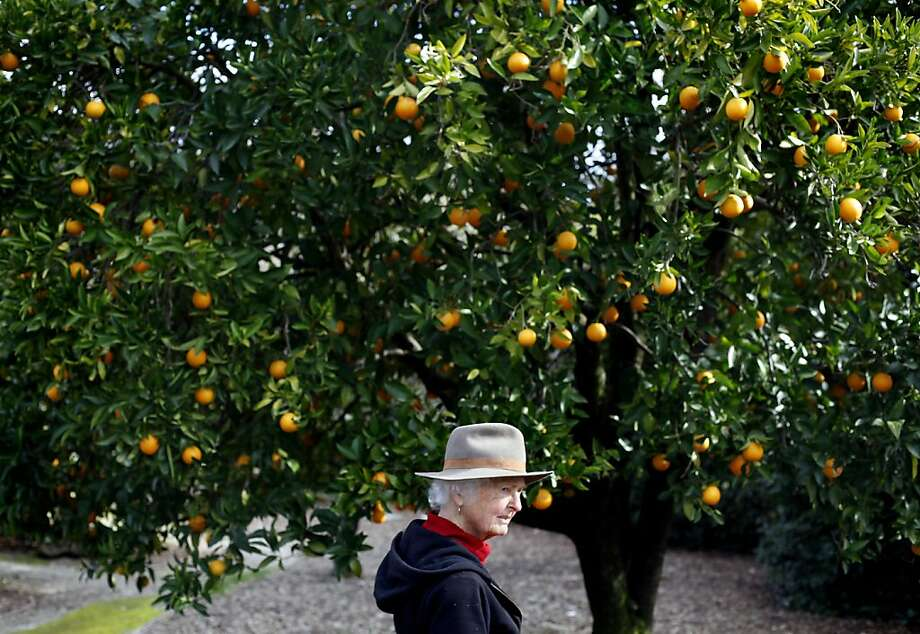 Anne Teller walks the property at the family's Oak Hill Farm in Glen Ellen. Photo: Sarah Rice, Special To The Chronicle