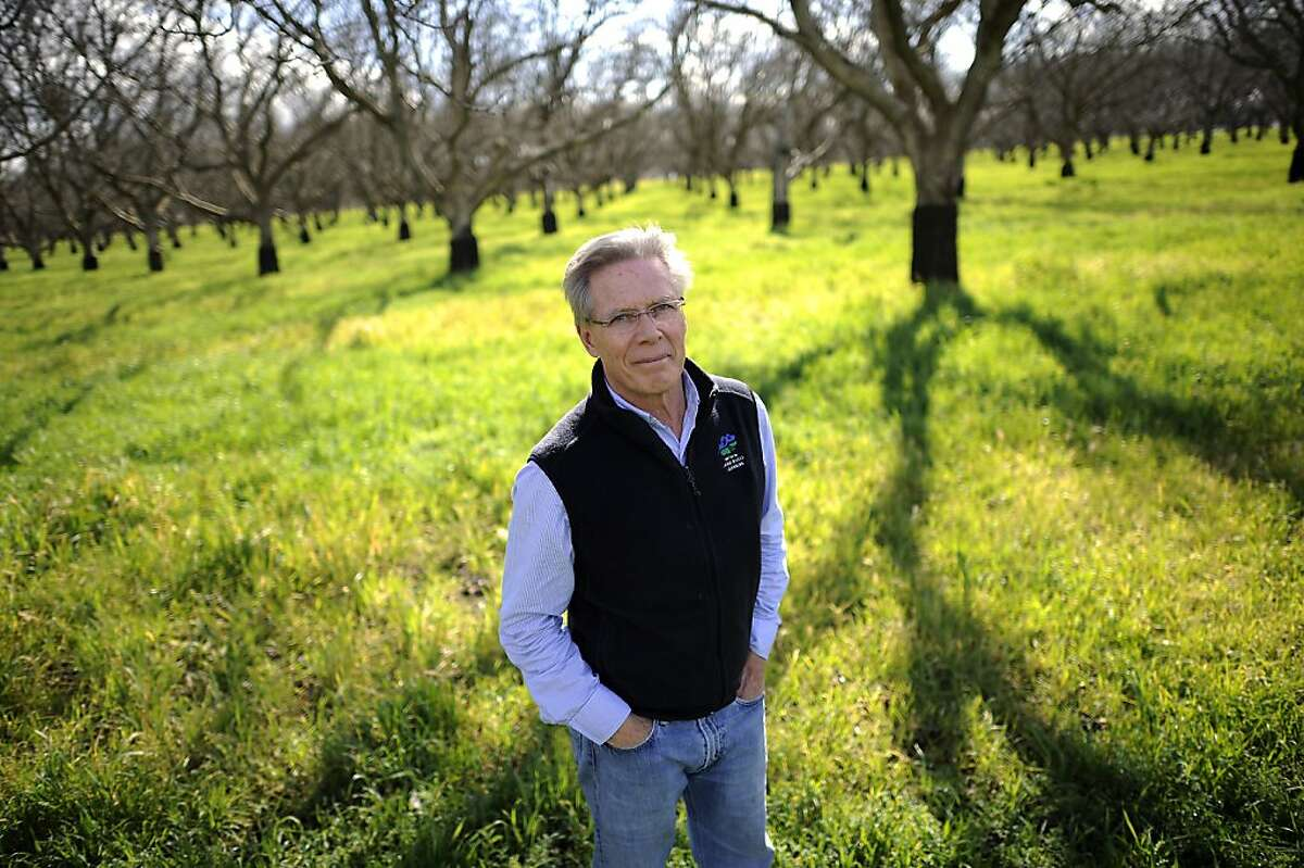 Craig McNamara, a California farmer, president of the California State Board of Food and Ag and founder of the Center for Land-Based Learning, is photographed at his organic walnut farm in Winters, CA, Thursday February 7th, 2013.