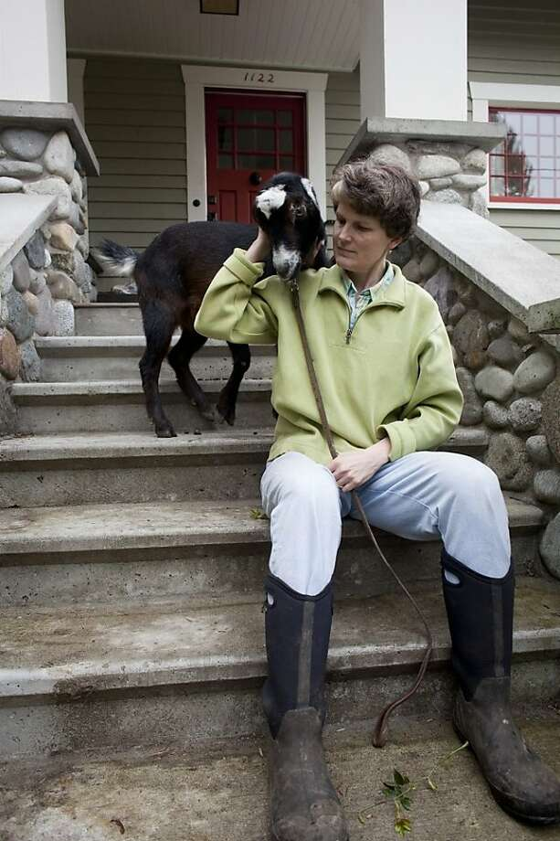 "Mill Valley-born Jennie Grant with Eloise, one of her dairy goats, at her Seattle home. Photo: Harley Soltes, Harley Soltes/""City Goats"""