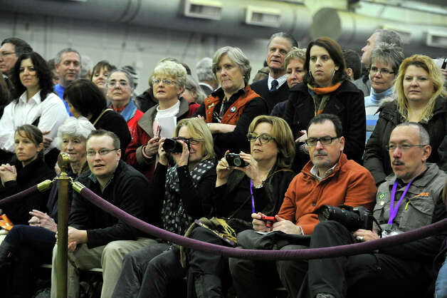 Spectators watch the petits bassets breed competition during the 137th Westminster Kennel Club Dog Show at Pier 92/94 in New York City on Monday, Feb. 11, 2013. For related coverage go to www.westminsterkennelclub.org. Photo: Jason Rearick / The News-Times