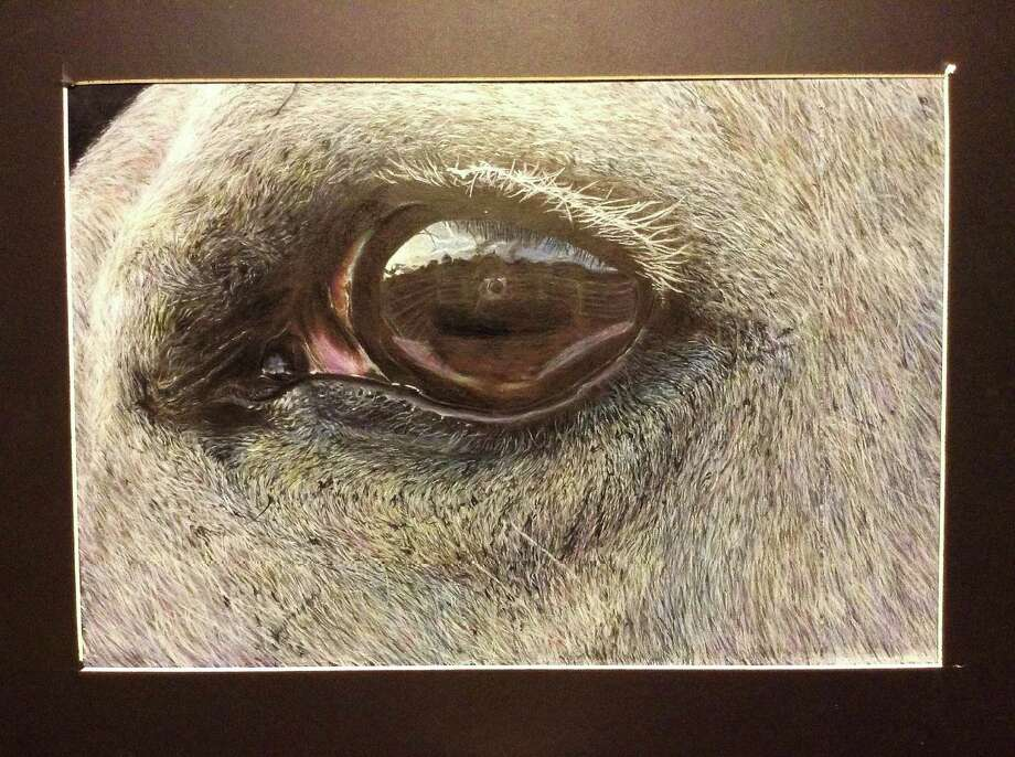 "Stratford High School junior Andrew Lee's painting ""First Sight"" includes detail such as a reflection of artist in the horse's eye. Photo: Andrew Lee"