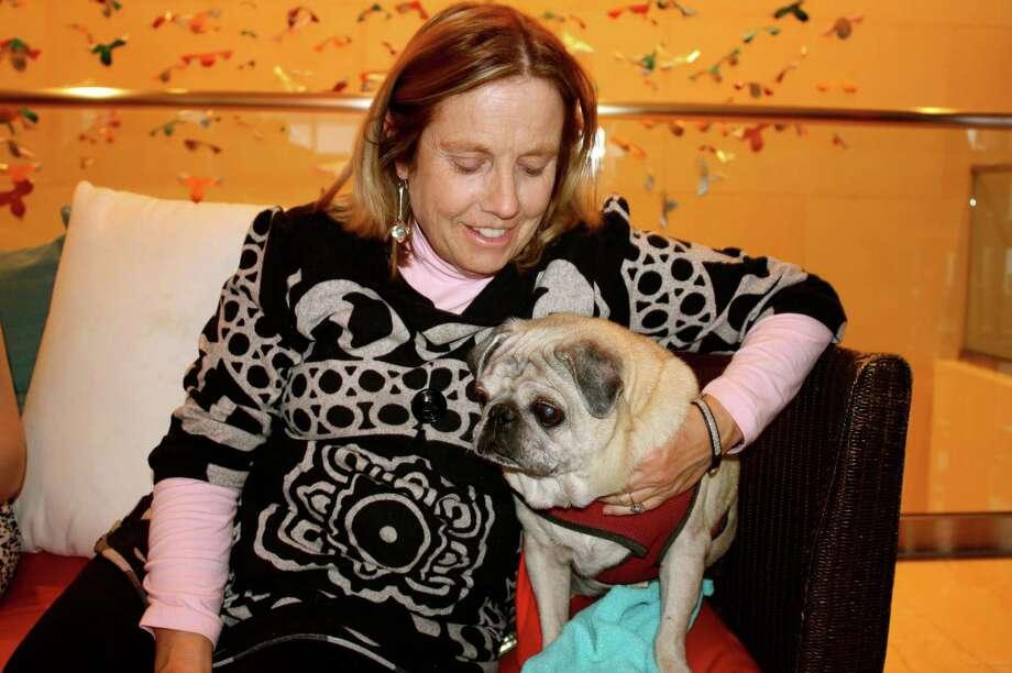 The San Antonio Humane Society hosts an adoption event at the Grand Hyatt San Antonio downtown on Tuesday, Feb. 12, 2013. Photo: Yvonne Zamora, MySA.com