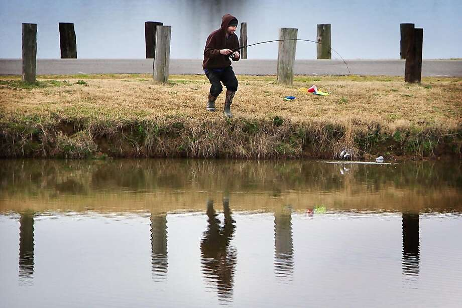 The one that didn't get away: Chris Roberts reels in a trout at Shelby Farms in Memphis, Tenn. Photo: Jim Weber, Associated Press