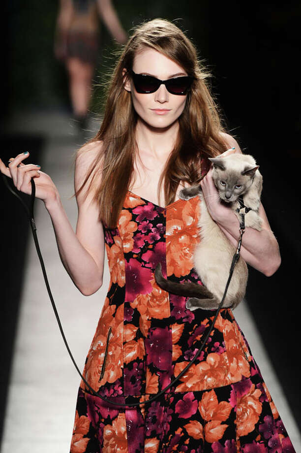 And a cat too. Tracy Reese Fall 2013. Photo: Frazer Harrison, AP/Getty / 2013 Getty Images