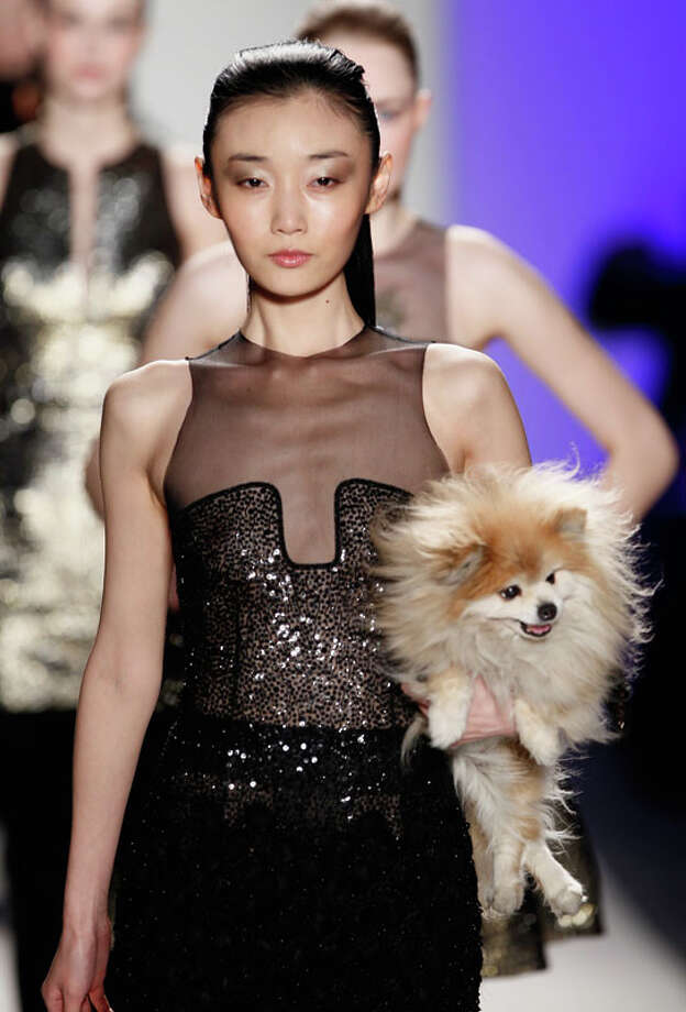 Puppy! Joanna Mastroianni Fall 2013.  Photo: Peter Michael Dills, AP/Getty / 2013 Getty Images