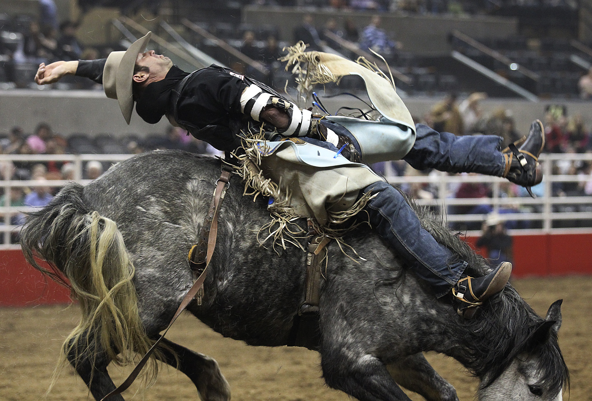 2013 S A Stock Show Amp Rodeo Day 7 San Antonio Express News