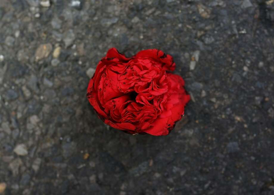 NEW YORK, NY - FEBRUARY 13:  A discarded rose bud is viewed in the street in the floral district on February 13, 2013 in New York City.  With Valentines Day tomorrow, the district is experiencing a rush of floral buyers and sellers to service customers on the national day of romance. Along with Mother's Day, Valentine's Day is one of the busiest days of the year for florists and flower growers.  (Photo by Spencer Platt/Getty Images) Photo: Spencer Platt, Getty Images