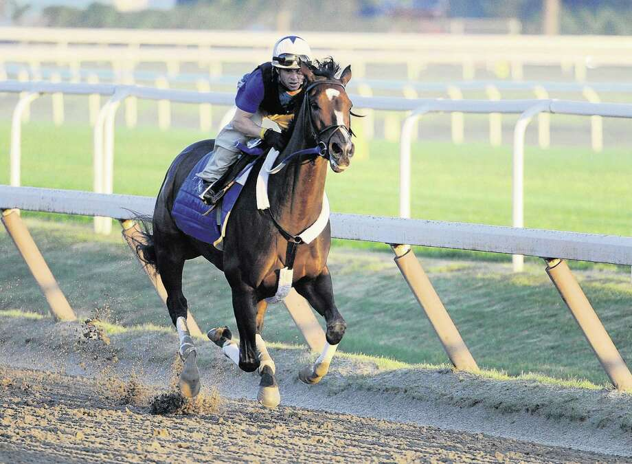 Reigning Horse of the Year Rachel Alexandra had her first speed work of the summer at the Oklahoma Training track in Saratoga Springs, New York July 5, 2020.   (Skip Dickstein/Times Union) Photo: Skip Dickstein