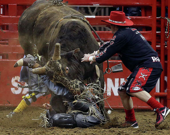 Brad Harris is trapped under a raging bull called Feeling So Fly FR after he rode the full 8 seconds for a score of 88 in rodeo action at the AT&T Center  on February 15, 2013.  The contestant was able to walk out of the arena. Photo: Tom Reel