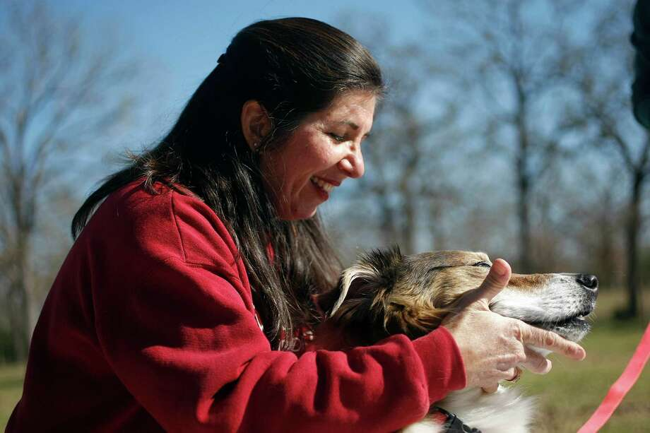 Dr. Jackie Doval adjusts the neck of 12-year-old Lucky at the home of one of her clients Thursday, Jan. 17, 2013, in College Station. Photo: Johnny Hanson, Houston Chronicle / © 2013  Houston Chronicle