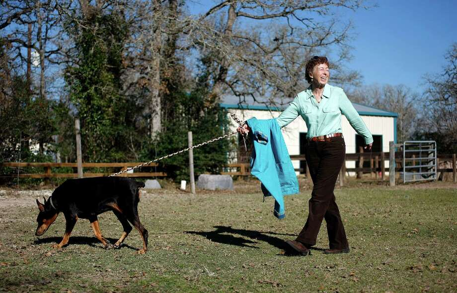 Gretchen Jones walks away with her 12-year-old Doberman Pinscher named Ollie after Ollie was treated by Dr. Jackie Doval. Photo: Johnny Hanson, Houston Chronicle / © 2013  Houston Chronicle