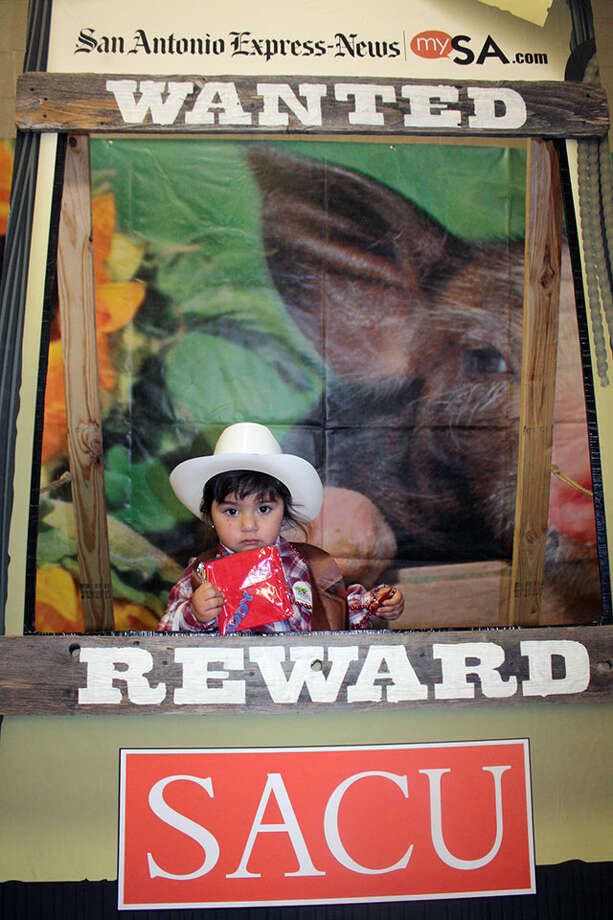 San Antonio Stock Show & Rodeo Saturday, Feb. 16, 2013 Photo: San Antonio Express-News