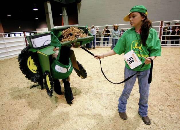 "Charli Villarreal, 12, of Hempstead, holds onto her llama ""Red River Swizzle"" who was dressed up like a John Deere Tractor, complete with the front end loader on it's face,  during  the Llama and Alpaca Costume and Halter show  at the Reliant Arena Sales Pavillion, during the Houston Livestock Show and Rodeo, Saturday, March 13, 2010, in Houston. ( Karen Warren / Chronicle ) Photo: Karen Warren, Houston Chronicle / Houston Chronicle"
