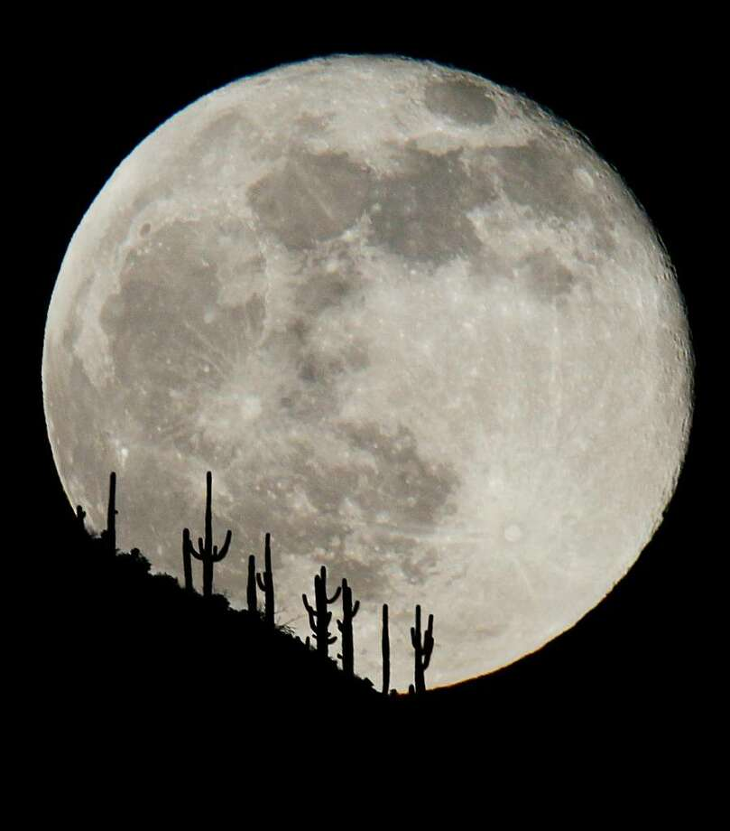 "In a Dec. 2, 2009, photo the first full moon of December climbs above a stand of saguaro cacti on a ridge line in New River, north of Phoenix, Ariz.  A ""Blue Moon,""  the second full moon in the same month, will occur New Year's Eve, Dec. 31.  (AP Photo/ Rob Schumacher/The Arizona Republic)  ** mags out  no sales** Photo: Rob Schumacher, AP / Arizona Republic"