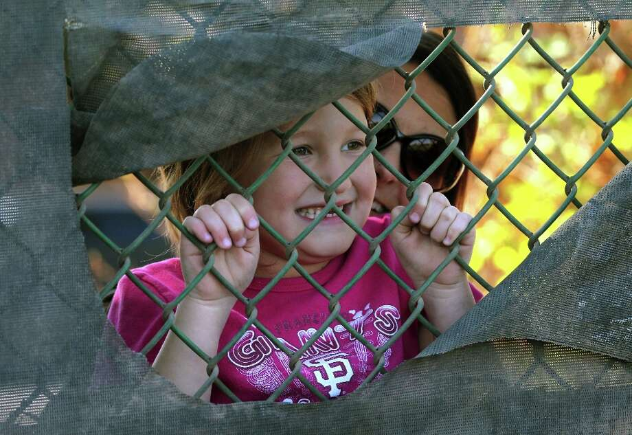 Seven-year-old San Francisco Giants fan McKenna Alvarado from Mesa, Ariz., gets help reaching a hole in the fence at Scottsdale Stadium so she can glimpse the Giants practice. Photo: Lance Iversen, The Chronicle / ONLINE_YES