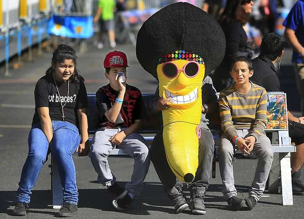 Of all the stuffed fruit you'd expect to win at the Cloverdale Citrus Fair in Cloverdale, Calif., a banana isn't one of them. Photo: Kent Porter, Associated Press