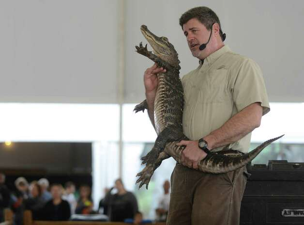 Wildlife expert Grant Kemmerer shows an alligator to people attending the Wild World of Animals exhibition on the grounds of the San Antonio Stock Show & Rodeo on Feb. 15, 2013. Photo: Billy Calzada, San Antonio Express-News / San Antonio Express-News