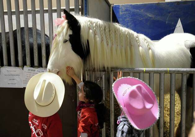 Children pet a draft horse in the horse exhibit area of the San Antonio Stock Show & Rodeo on  Feb. 15, 2013. Photo: Billy Calzada, San Antonio Express-News / San Antonio Express-News