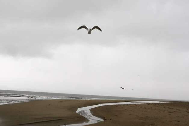 The deserted beach in Alameda, Calif., on Tuesday, February 19, 2013, as early afternoon rains soaked the sand. Photo: Liz Hafalia, The Chronicle