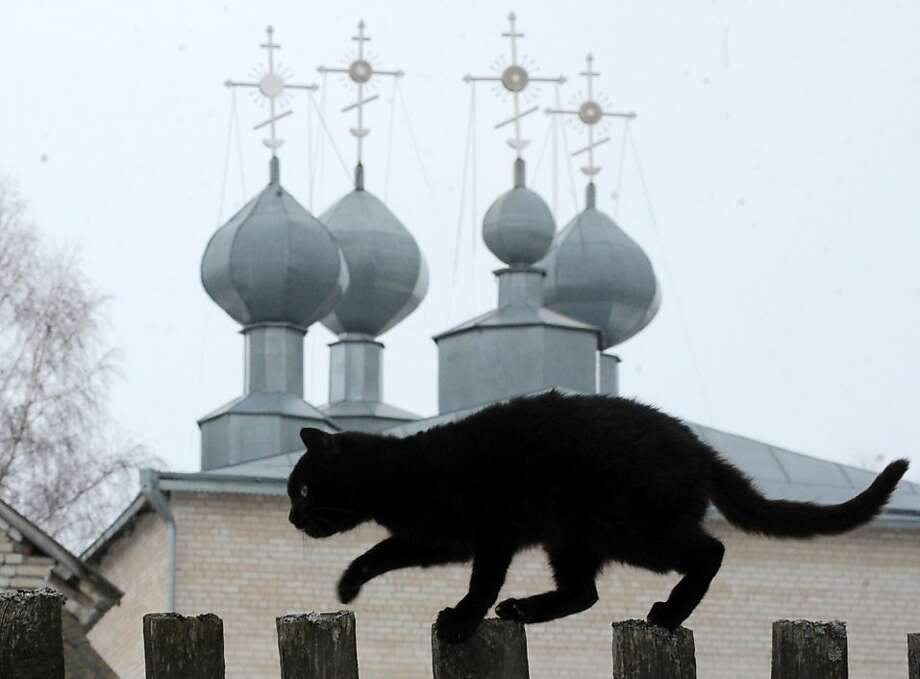 The cat and the cathedral: A black cat tiptoes along a fence by a Russian Orthodox cathedral in the Belarusian village of Zapesochie. Photo: Viktor Drachev, AFP/Getty Images