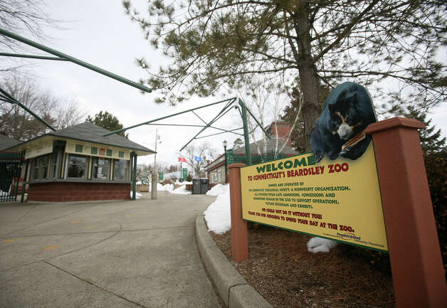 The Beardsley Zoo in Bridgeport on Wednesday, February 20, 2013. Photo: Brian A. Pounds / Connecticut Post