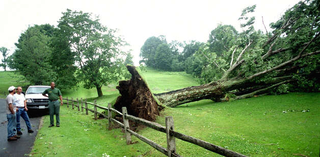 Onlookers check out the tree felled alongside the 4th green at Lake Waramaug Country Club in New Preston by a June 25, 2001 tornado. Photo: Norm Cummings, Norm Cummings/Spectrum / The News-Times
