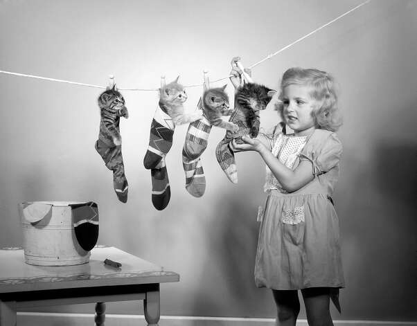 A little girl uses clothes pegs to hang four kittens from a washing line, 1951. Photo: Lambert, Getty Images / 2006 Getty Images
