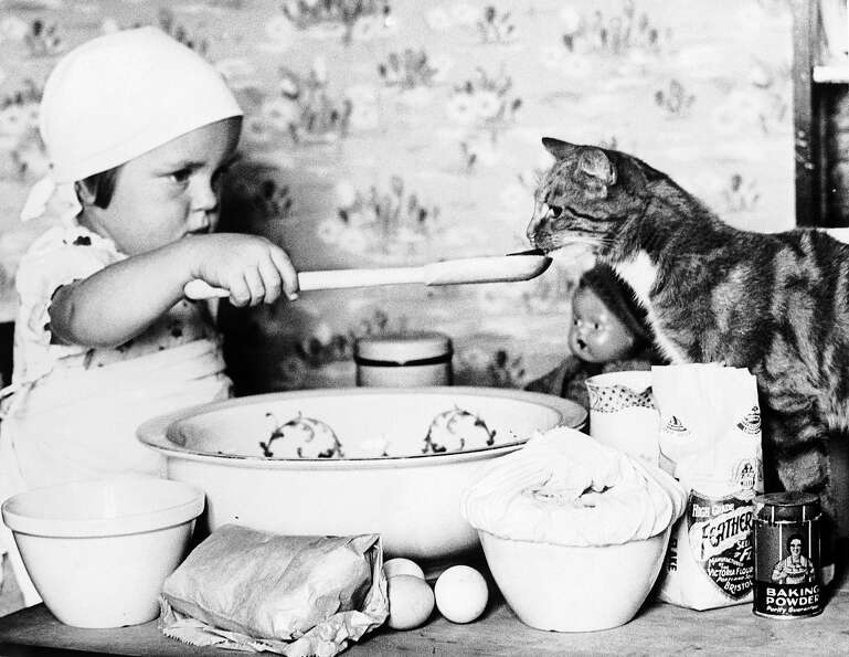 A young cook gives a cat a sample of her culinary creation, 1930.