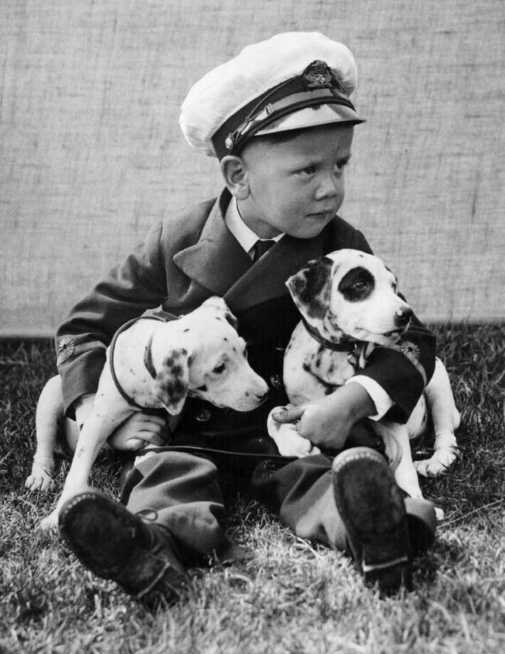 Brian Bethall, aged 3 years, is holding on to his two entries for the dog show held in aid of the cottage hospital at Ongar in Essex, 1938. Photo: Fox Photos, Getty Images / Hulton Archive