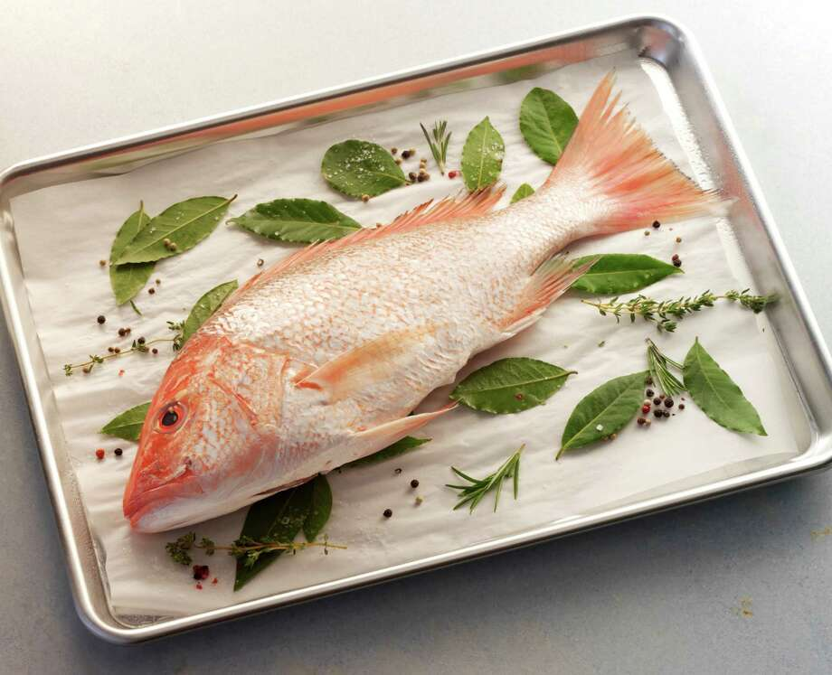 When it came to red snapper (pictured), only seven of 120 samples bought nationally were actually red snapper. Photo: Carolyn Taylor Photography, Getty Images / (c) Carolyn Taylor Photography