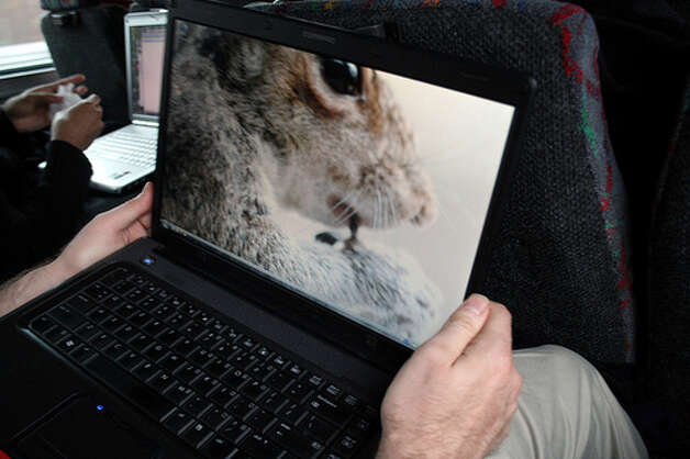 Spending too much time with a hot laptop: Anyone can experience skin problems from the heat if you use a laptop on your lap instead of a desk or stand, but there's particularly concerning news for men. NYU researchers found that laptops can raise the temperature of the scrotum, which would affect a man's sperm count. (Photo: Dotpolka, Flickr)