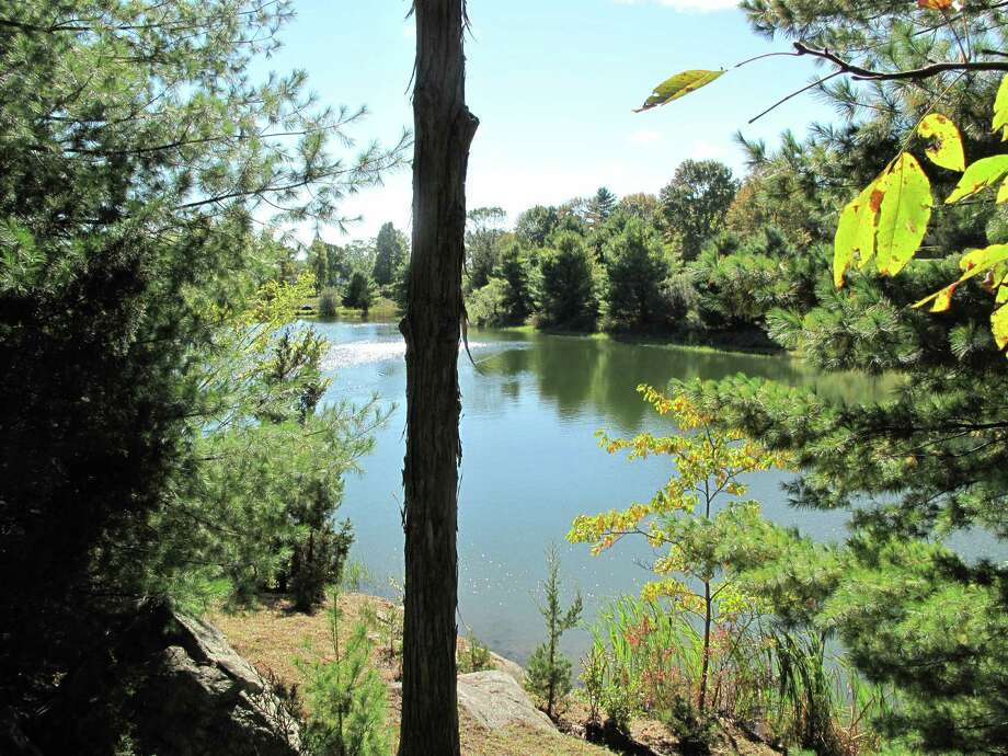 The pond at Grace Farms, which looks out roughly to where the proposed tower would have stood. New Canaan, Conn. Photo: Oct. 1, 2012. Photo: Tyler Woods